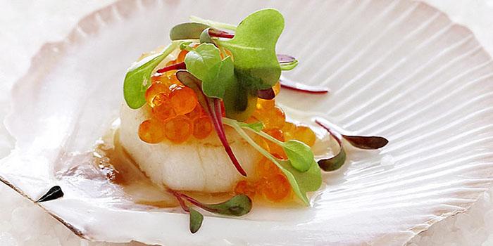 Sò điệp trứng cá Carvia, nhahangphap.com