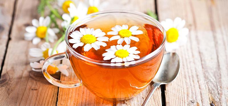 Trà hoa cúc camomile túi lọc, nhahangphap.com